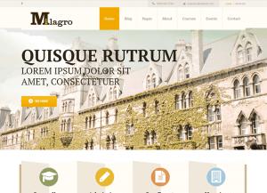 Milagro wordpress online mokymosi tema