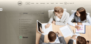 ensei wordpress theme